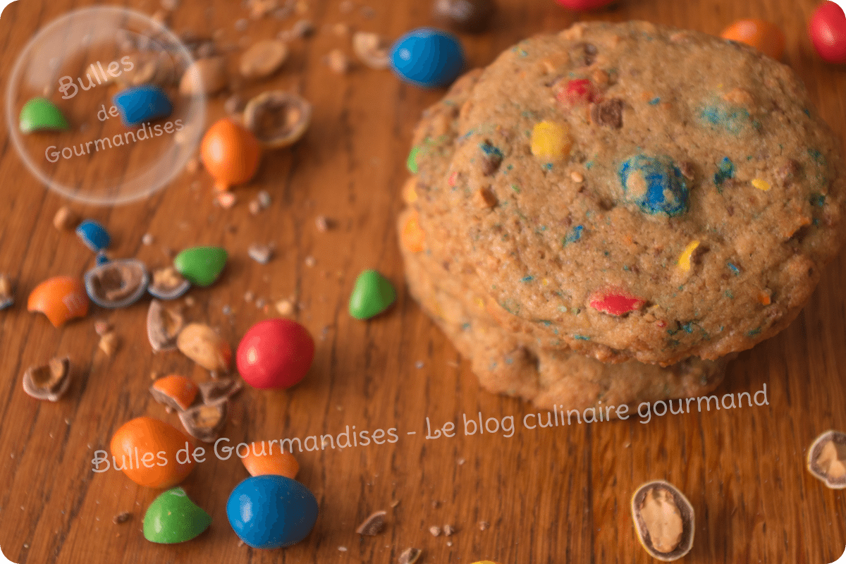 modele-paysage-cookies-mms3
